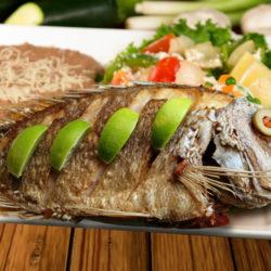 Fish Mojarra